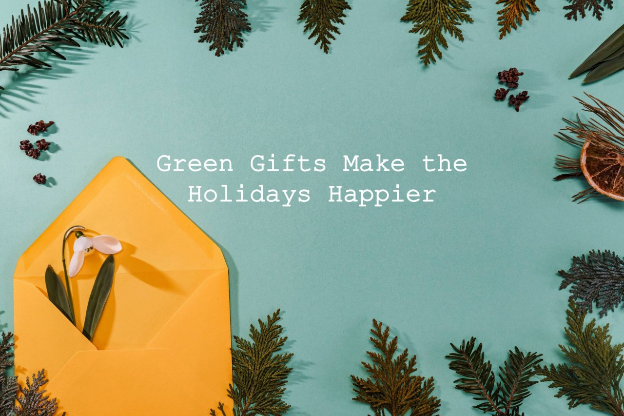 green gifts make the holidays happier