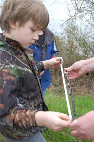 Boy with snake at critter count