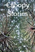 Canopy Stories